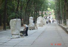 Спорт – нова тема традиційного черкаського фестивалю кам'яних скульптур